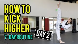 How to Kick Higher: Stretches & Drills (Day 2 Routine)
