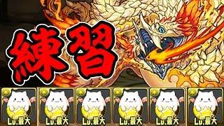 【謎】白蛇の地下迷宮の固定チームがヤバすぎる【パズドラ】