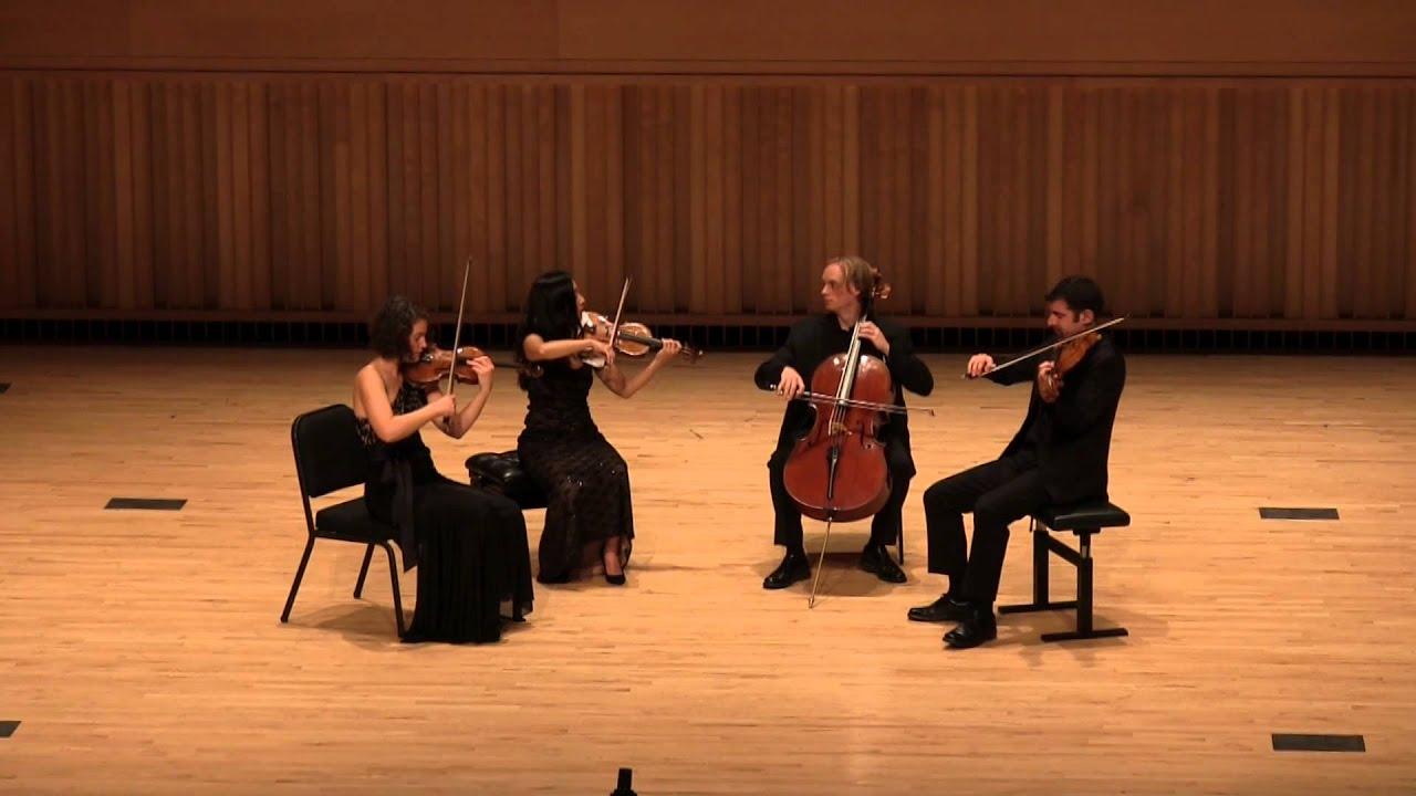 Blog — Rebecca Fischer Violin
