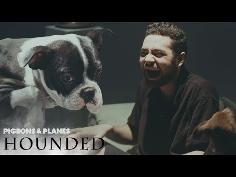 Wiki Gets Interviewed by Puppies | Hounded