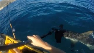Hammerhead Shark Attacks Kayak Fisherman