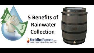 Benefits Harvesting Rainwater Everyday Uses