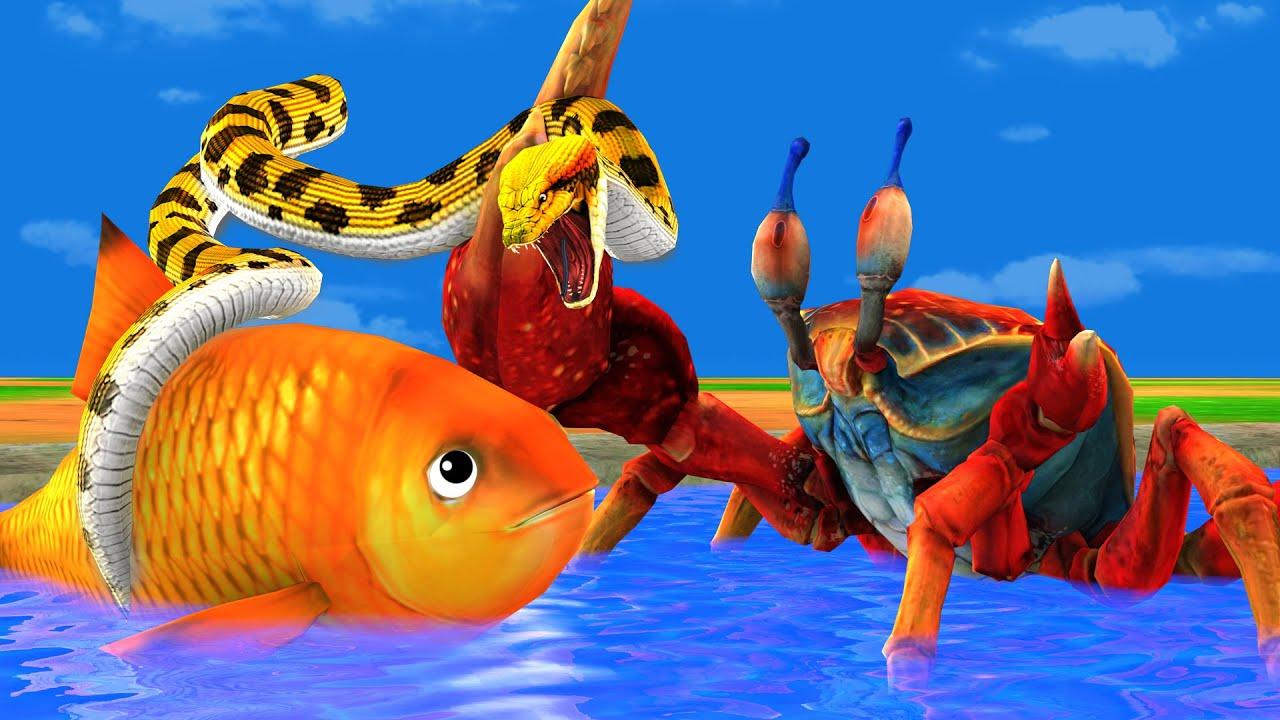 बड़ा केकड़ा लालची सांप और विशाल मछली Big Crab Greedy Snake and Giant Fish Kahani - Hindi Kahaniya