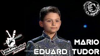 Mario Eduard Tudor - De-ai fi tu salcie la mal (Vocea Romaniei Junior 220618)