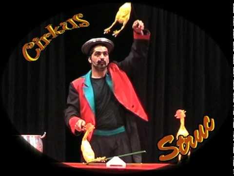 Cirkus Struc