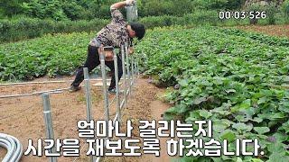 [비닐하우스 영상] 인발파이프 박는 영상 *연장이 중요…