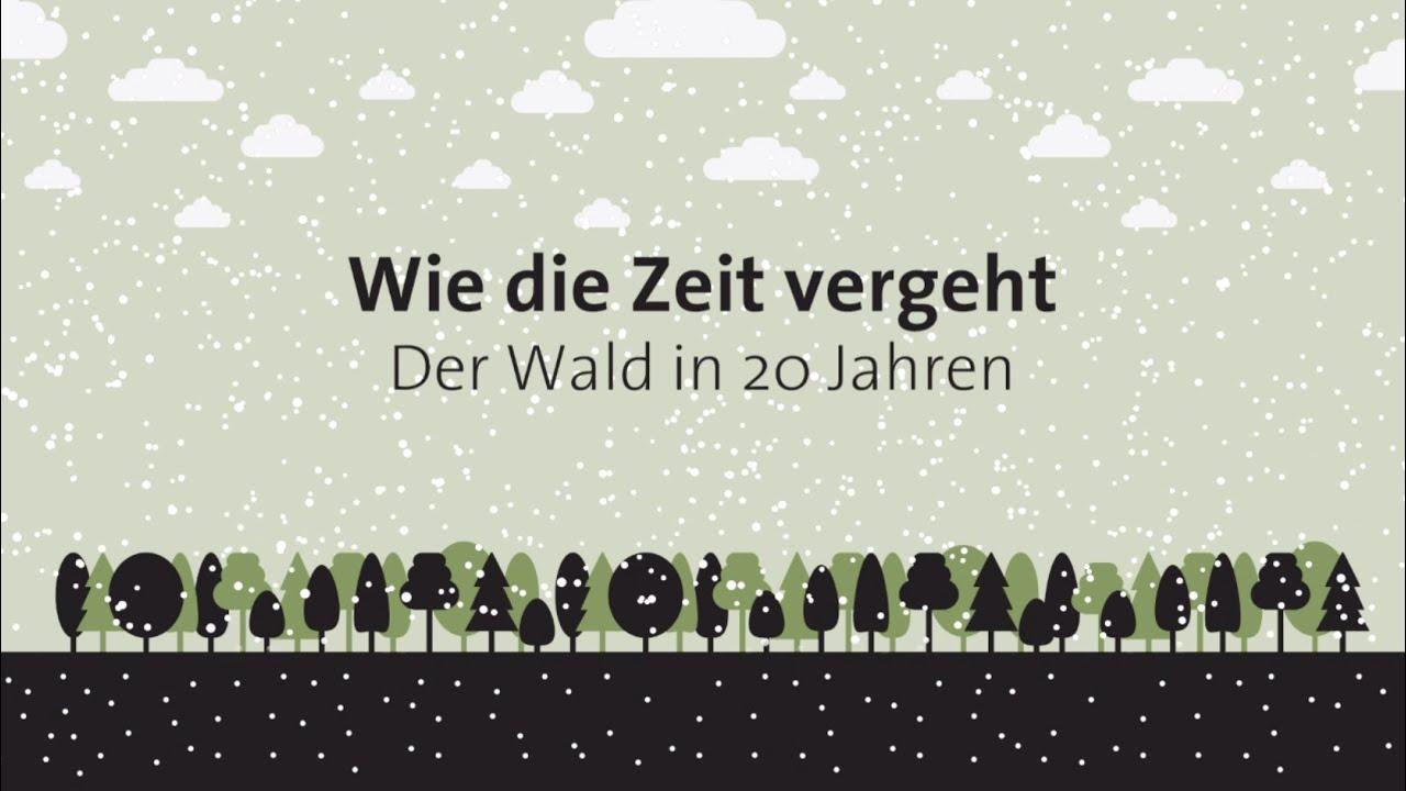 Weihnachtsgrüße Arbeitgeber.Weihnachtsgrüße Aus Dem Wald Wie Die Zeit Vergeht Der Wald In 20