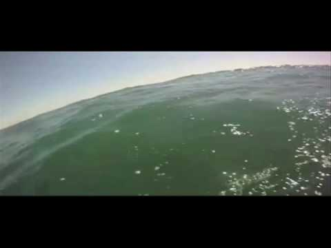 RAW Video: Great white shark swims around surfer!