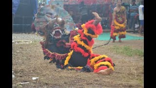 Barong Merah Menggila jaranan BERINGIN JAYA live desa gunung selan  -  PART #1