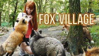 Video Fox Village in Zao Japan!  蔵王きつね村・kitsune mura download MP3, 3GP, MP4, WEBM, AVI, FLV November 2017