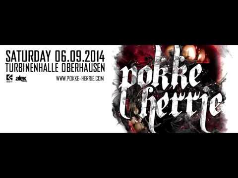 Tieum @ Pokke Herrie 2014