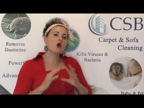 Pros and Cons of WOOL Carpets - Carpet Buying Guide - CSB Carpet Cleaning