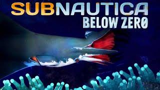 Subnautica Below Zero 08 | Es sieht gefährlich aus... ES IST GEFÄHRLICH! |  Gameplay thumbnail