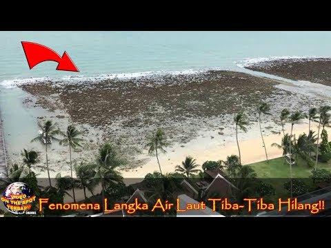 Air Laut Tiba² 'Hilang' ini Bikin Warga Gempar!! Tak Disangka Penyebabnya.... Langka!