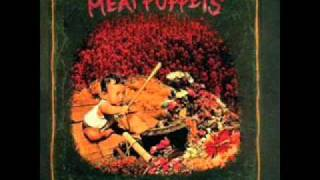 Meat Puppets - Tumblin
