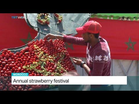 Annual Strawberry Festival in Morocco