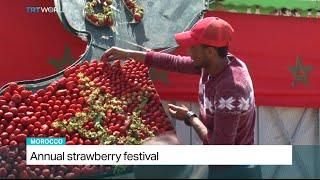 Video Annual Strawberry Festival in Morocco download MP3, 3GP, MP4, WEBM, AVI, FLV Mei 2018