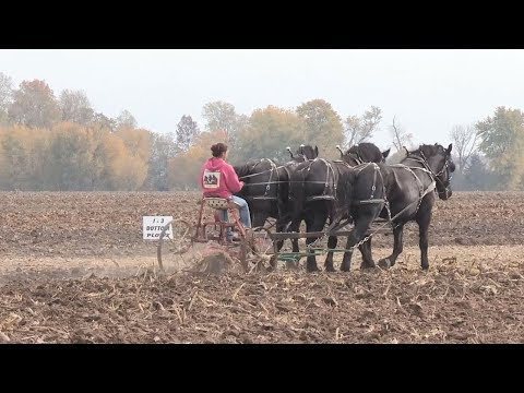 2017 Plow Day at Tom Renner's Farm