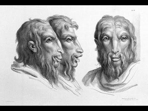 [TOP Khám Phá¸] Điều Kinh Hoàng Xảy Ra Nếu Loài Người Tiến Hóa Từ Một Loài Động Vật Khác
