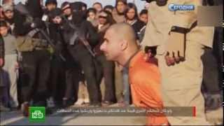 Боевики ИГИЛ жестоко казнили пленых - 07.07.2015