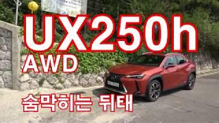 렉서스 UX250h AWD 시승기(Lexus UX250h AWD test drive)