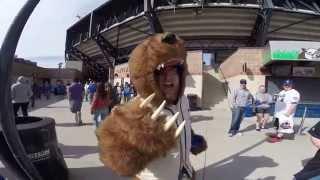 SportsManias DieHard Tour - New York Mets