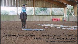 DILEMME POUR BLUE - TERREUR POUR VIEWTON - Bâche à 10h40 - Etrier Cherbourgeois
