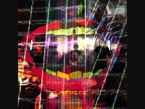 Animal Collective- Wide Eyed