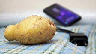 Как зарядить смартфон с помощью картофеля?