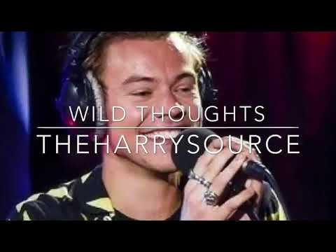 Harry Styles - Wild Thoughts (Cover)