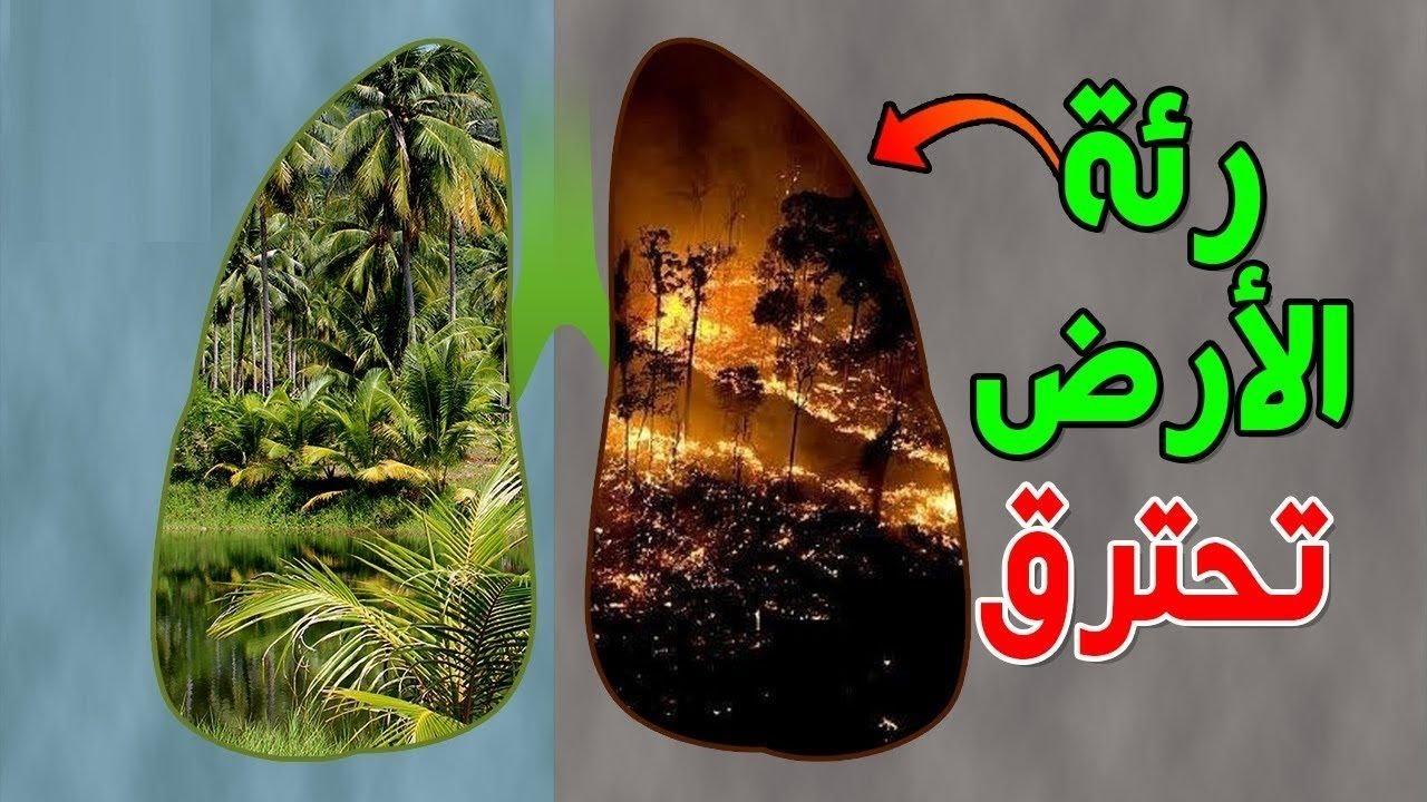 من وراء كارثة حرائق الأمازون؟