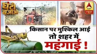 Farmers struggling to protect crops from locust invasion | Ghanti Bajao