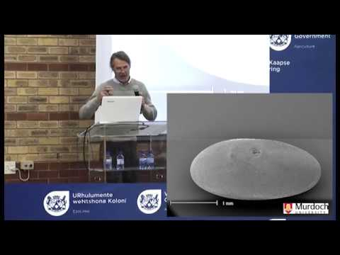 05 Prof Brad Nutt – Centre for Rhizobium Studies, Murdoch University Western Australia   Serredella