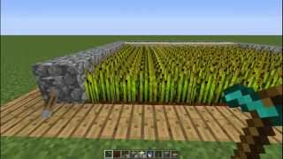Minecraft Tutorials | How to make an Automatic Farm without Sticky Pistons