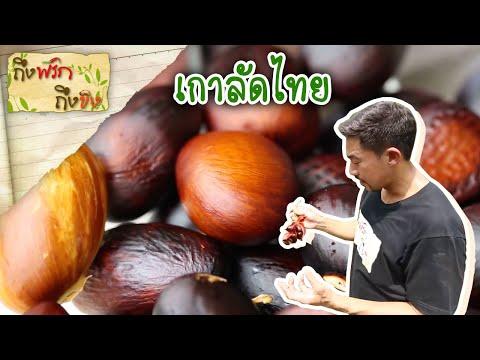 ถึงพริกถึงขิง (Tuengpriktuengkhing) 30-03-17 : เกาลัดไทย