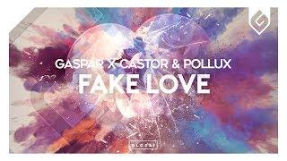 Gaspar x Castor & Pollux - Fake Love