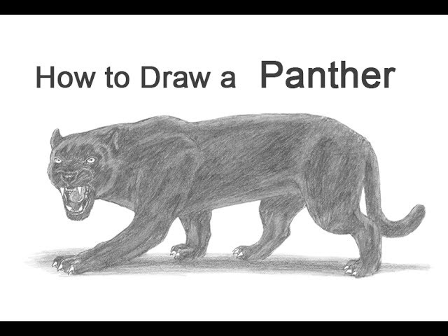 How To Draw A Black Panther Youtube