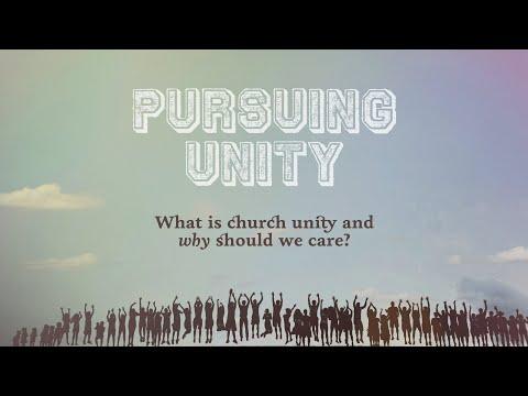 Pursuing Unity - Introduction - Tony Payne