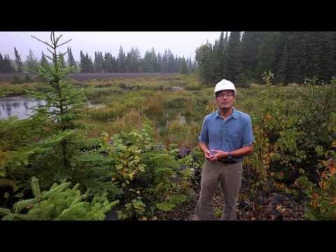 PolyMet Will Protect Minnesota's Environment