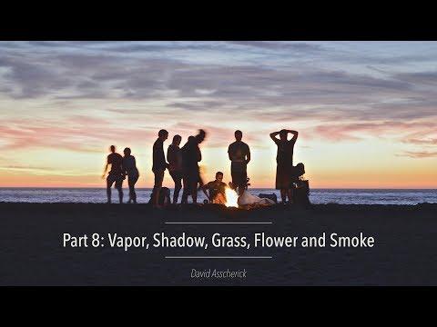 REALigion Part 8: Vapor, Shadow, Grass, Flower, and Smoke