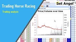 Peter Webb, Bet Angel - Horse racing trading analysis