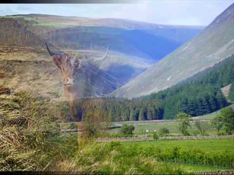 Capercaillie - Iain Ghlinn 'Cuaich (with Gaelic & English Translation).wmv