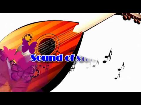 อรวี สัจจานนท์ - แว่วเสียงซึง