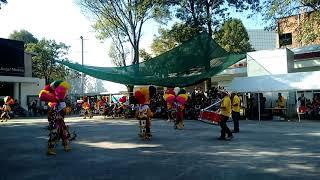 festival de danzas Marcelo Torreblanca 2017danza de matlachines escuela nacional de danza folklórica