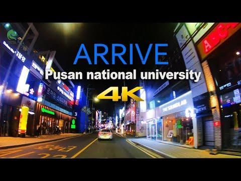 Pusan National University (PNU) in South Korea / Night Road trip / By Stallion [Healing Racer 4K]