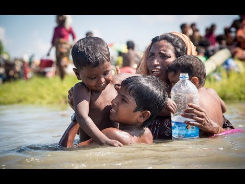 Rohingya Crisis: UNHCR welcomes $334M aid pledge