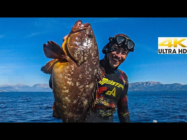 Crazy Day at Sea Bluewater Spearfishing🌊Grouper Caught Barehanded | Spearfishing Life 🇬🇷