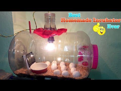, DIY - সাদাসিধা ইনকিউবেটর || কিভাবে একটি ডিমের ইনকিউবেটর তৈরি করা || হ্যাচিং মুরগির ডিম