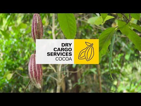 MSC Dry Cargo - Cocoa