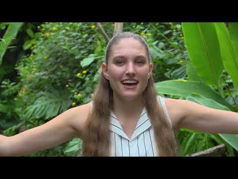 Lisette van der Ploeg - Vlinders (officiële videoclip)